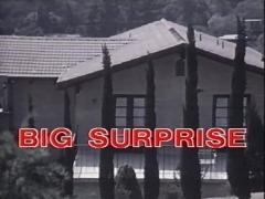 Vintage 70s danish Big Surprise cc79